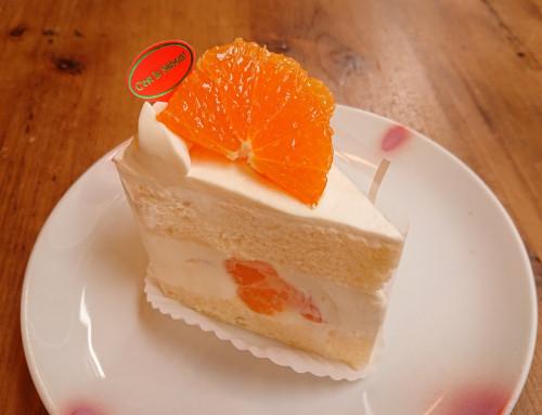 由良早生みかんのショートケーキ