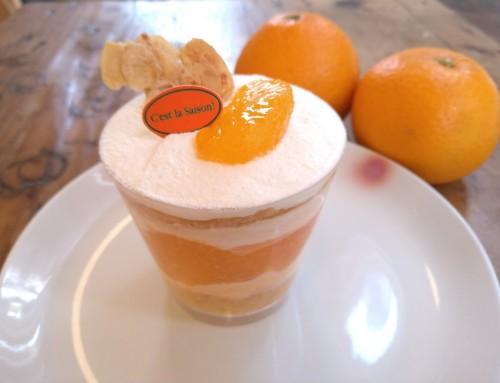 清見オレンジのズッパイングレーゼ