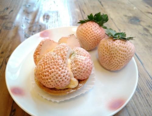 桃薫いちごのタルトレット