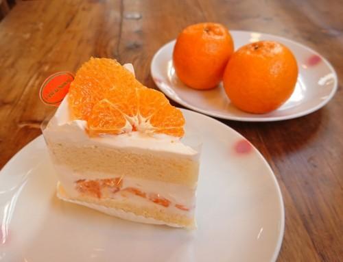 プレミアムぽんかんのショートケーキ
